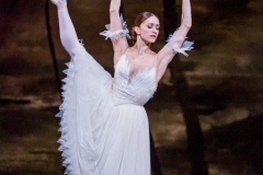 A scene from Giselle by The Royal Ballet @ Royal Opera House. (Taken 16-03-16) ©Tristram Kenton 03/16 (3 Raveley Street, LONDON NW5 2HX TEL 0207 267 5550  Mob 07973 617 355)email: tristram@tristramkenton.com